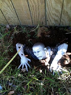 comprar un zombie, accesorios de zombie, gadget zombie