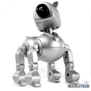 mascota-web-cam