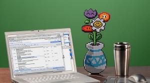 8 bits flores