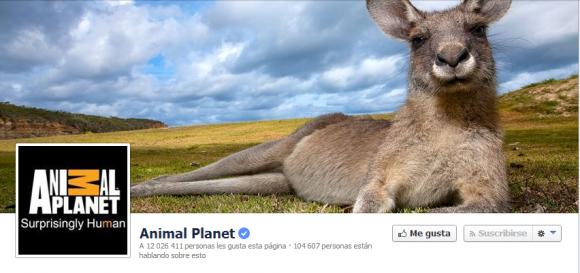 Cover para facebook del Animal Planet