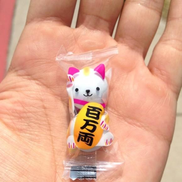 comida japonesa gatito